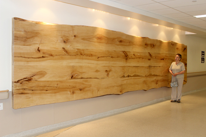 Massive boardroom table top crafted from harvested maple trees at RVH